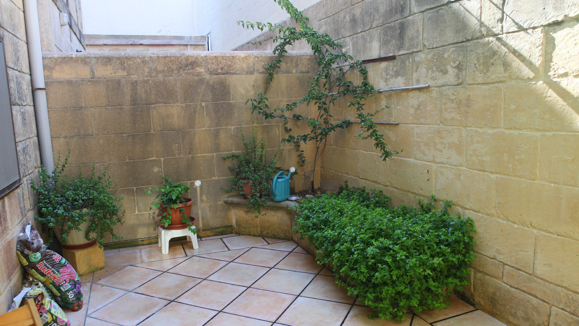 Backyard Gozo Vacation